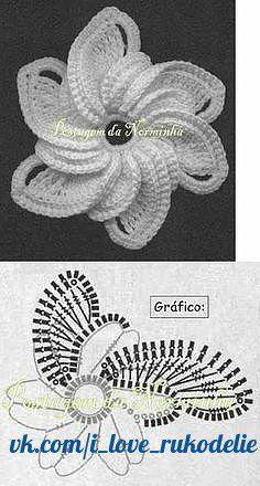 Roberta Crochê e Cia: Bela Carteira em Croche