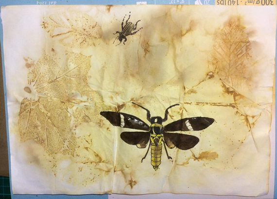 ORIGINAL DRAWING. Insects on eco-printed paper