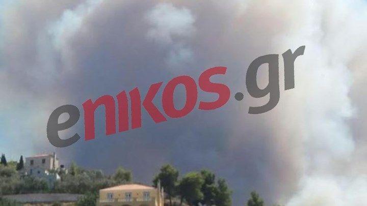 Κοντά σε σπίτια η πυρκαγιά στις Σπέτσες - ΒΙΝΤΕΟ αναγνώστη