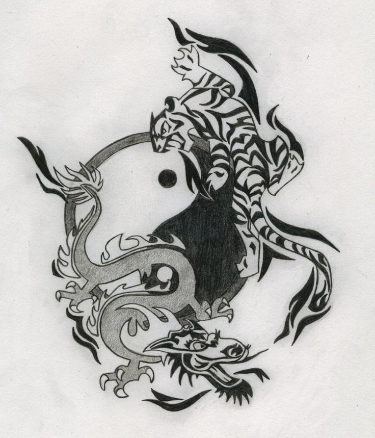 tattoo drawings yin yang dragon tiger tattoo drawing tattoo outlines pinterest tattoo. Black Bedroom Furniture Sets. Home Design Ideas