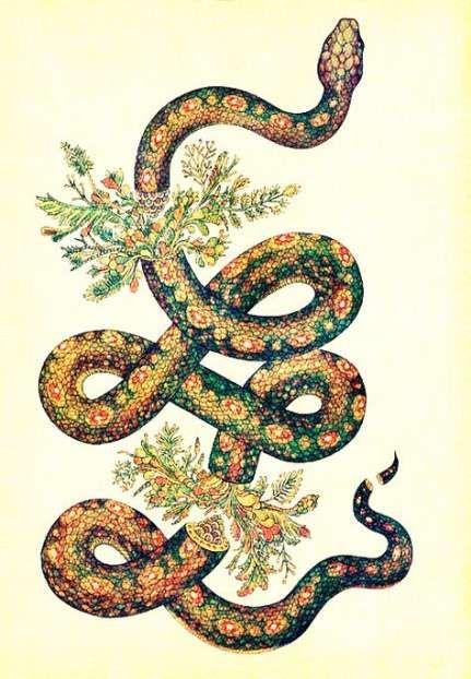 Tattoo Snake Ideas Feminine 25 Ideas