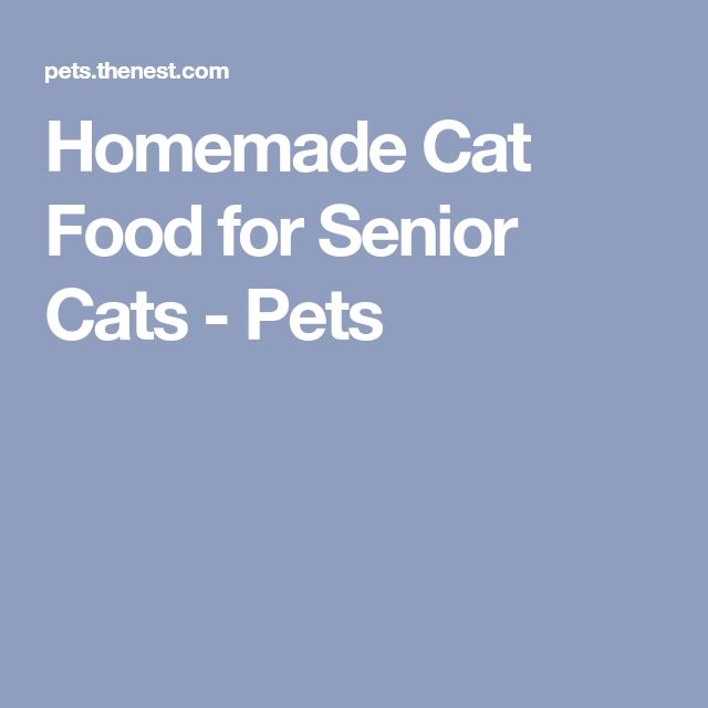 Homemade Cat Food for Senior Cats - Pets