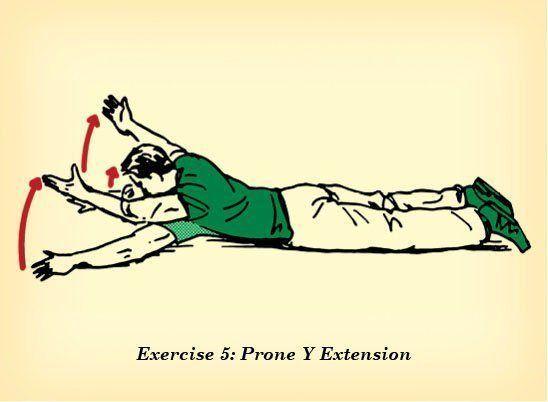"""Deite de barriga para baixo, junte os pés e abra os braços, com as palmas da mão para baixo, formando uma posição de """"Y"""". Levante o tronco e gire as mãos ao mesmo tempo, de modo que as palmas fiquem frente a frente. Atenção: deixe a cabeça alinhada com o pescoço! Aguente nessa posição por 10 segundos. Faça 10 sequências."""