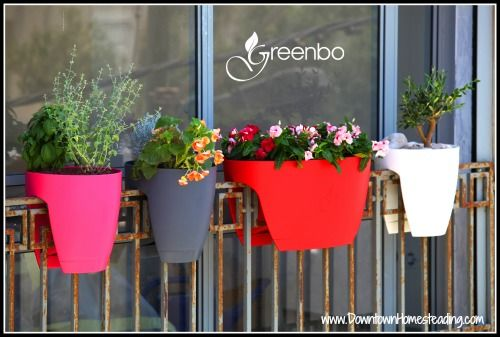 Balcony Gardening. These pots are sweet.  Learn how to maximize balcony space for gardening
