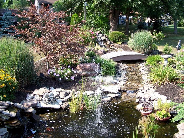 73 best garden images on pinterest backyard ponds for Koi pond design malaysia
