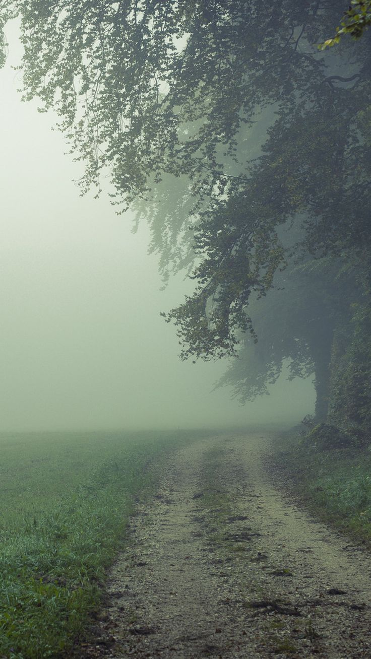 Wallpaper iphone hujan - Country Misty Roads Iphone 6 Plus Wallpaper