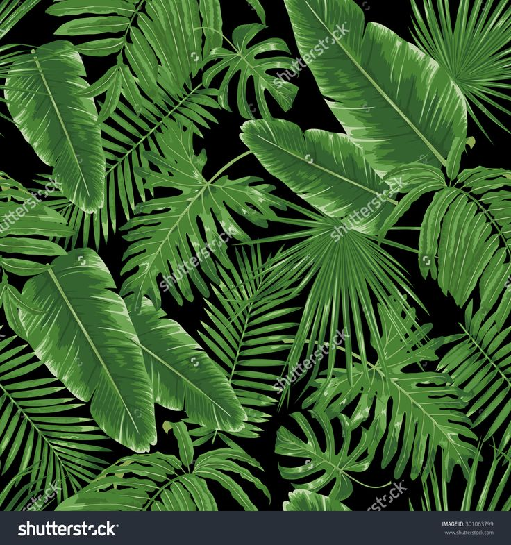 Stock Vector Tropical Leaves Night Jungle Seamless