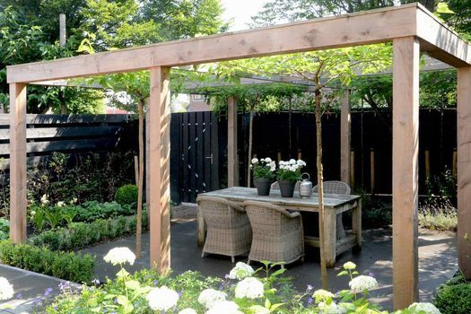 17 beste afbeeldingen over tuin op pinterest tuinen blauweregen en hortensia - Bedek een houten pergola ...
