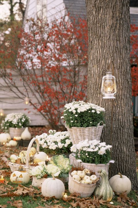 Just because it is autumn doesn't mean your house needs to be orange. Decorate with white pumpkins, gourds, and mums rather than the traditional pumpkin route.