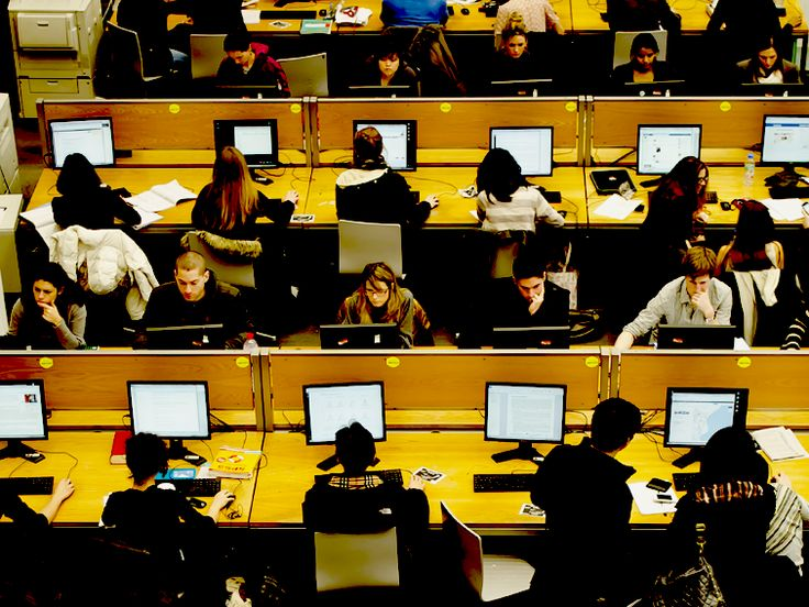 Essay software free download photo 5