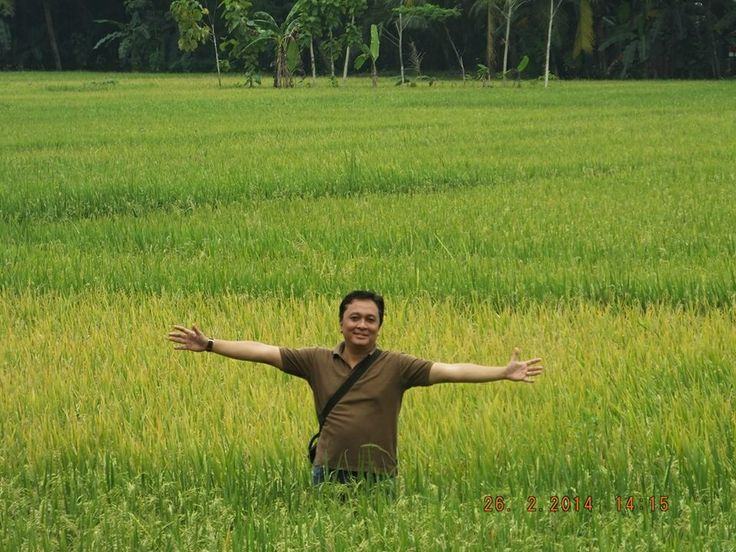 In the midle of rice field