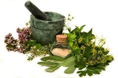Must have, must grow medicinal herbs - a follow up article to How to Plan and Plant a Medicinal Herb Garden.