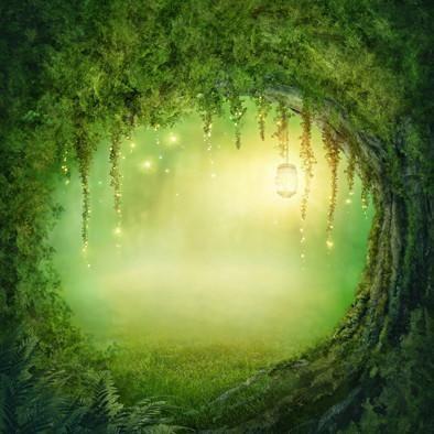Enchanted Opening Backdrop Whimsical Woodland Backdrop