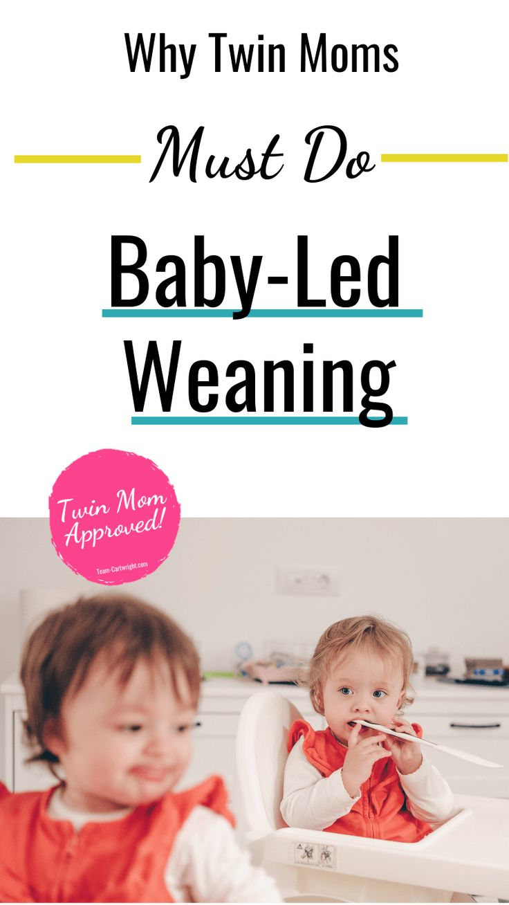Why Baby Led Weaning is a Perfect Approach for Twins ...