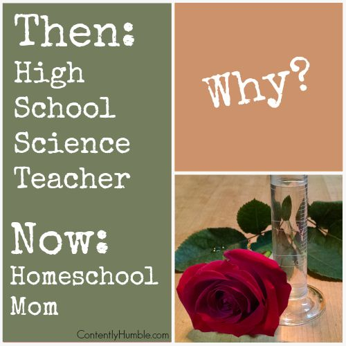 Must Read Homeschool Articles For Encouragement And: 335 Best New Homeschoolers Must-Haves Images On Pinterest