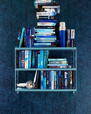 What a great photo, shows our love for blue and books all in one!
