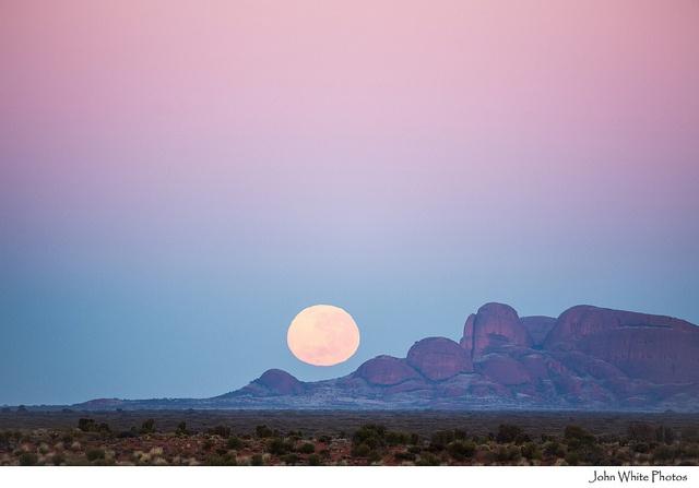 yulara, northern territory #australia #sunset