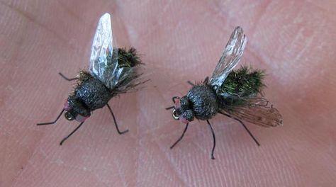 Vous en avez assez des mouches ? À l'extérieur c'est déjà pénible, mais à l'intérieur c'est pire. Et on ne demande qu'à s'en débarrasser au plus vite. Petites mouches,