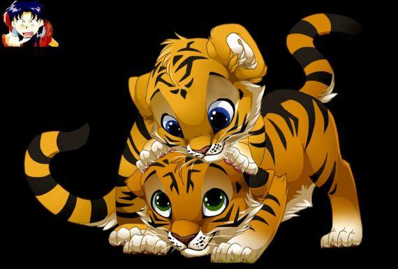 deux bébés tigres#so#cute