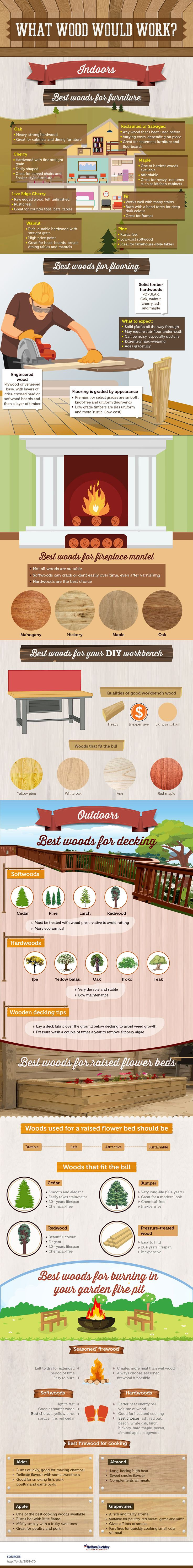 Which Wood is Best for Furniture, Flooring, Outdoors Infographic. Topic: carpenter, carpentry, woodworking, interior design, home improvement.