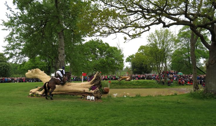 Badminton Horse Trials 2017 - Cross Country. Photo: WendyJames ~ May 2017