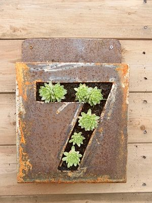 Cute idea for your house numberGardens Ideas, Decor Ideas, Succulents Planters Ideas, Cute Ideas, Cole Artists, House Plants House, Artists Blacksmith, House Numbers, Address Numbers Ideas