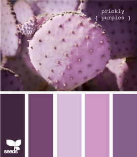 I am super attracted to purples right now! Prickly! #designseeds