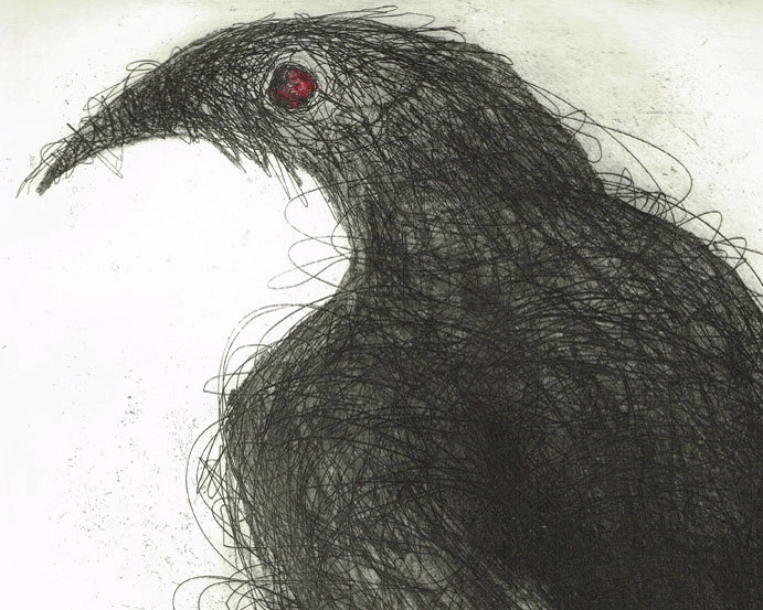 White Winged Chough, Hand Pulled Etching with Aquatint, Australian Native Bird.