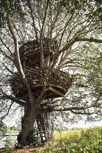 9 | 13 Of The World's Coolest Treehouses | Co.Design | business