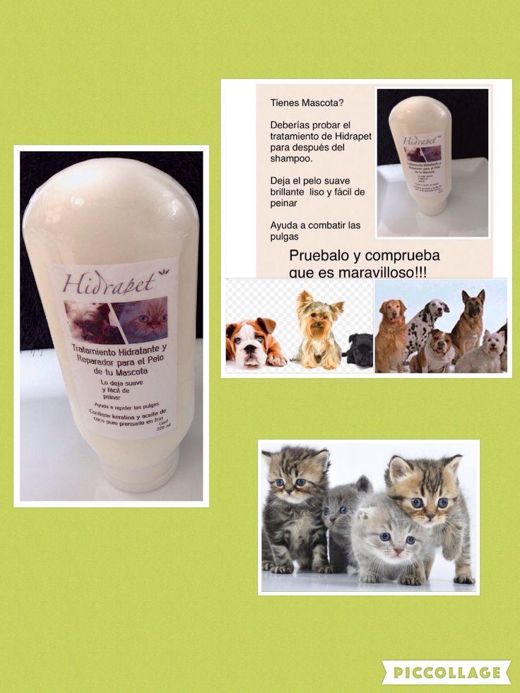 Tratamiento para después del shampoo para las mascotas. Les deja el pelo suave liso brillante y fácil de peinar.