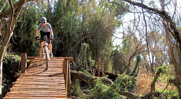 20 Top MTB Trails in SA