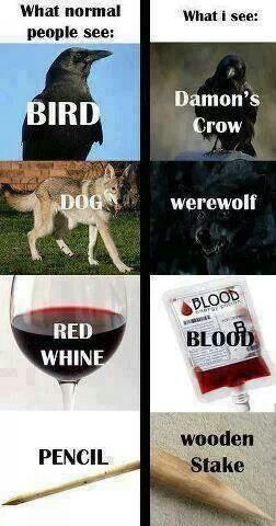Photo: Problems of A Vampire Diaries Addict http://sulia.com/channel/vampire-diaries/f/b7a338f9-8e40-4acb-a249-ff46d441723c/?pinner=54575851&