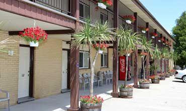 Listowel Country Inn - Our Standard Rooms   Motel in Listowel, Ontario