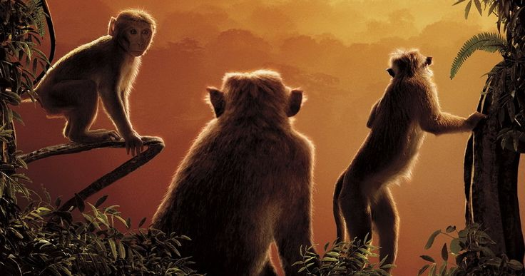 DisneyNature & 'Monkey Kingdom' Release Thank You Video -- With every ticket purchased for Disneynature's&#160Monkey Kingdom&#160opening week, Disney will donate to benefit Conservation International. -- http://www.movieweb.com/disneynature-monkey-kingdom-movie-thank-you-video