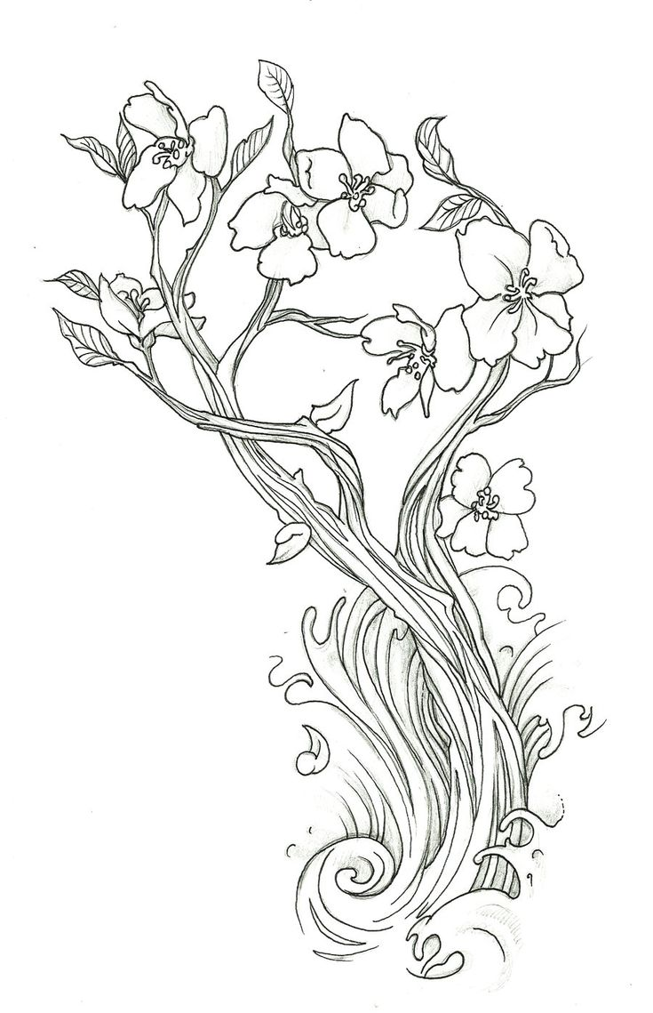 lovely cherry blossom flower doodler art coloring page free printable - Cherry Blossom Tree Coloring Pages
