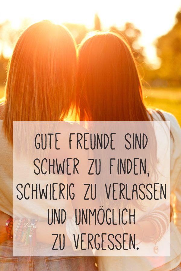 Freunde sind das Beste!                                                                                                                                                                                 Mehr