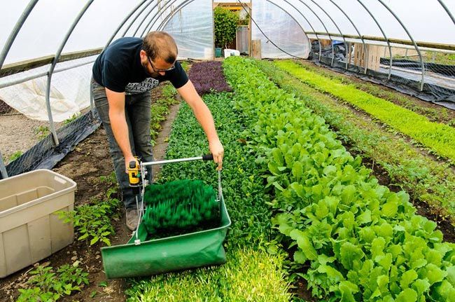 Urban Farming: Growing For Profit – $75,000 on 1/3 acre | Home Design, Garden & Architecture Blog Magazine