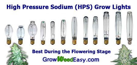 High Pressure Sodium (HPS) grow lights are well-suited to the cannabis flowering (budding) stage. Getting the right type of lights during the flowering stage will ensure bigger yields and better quality buds. Source: http://growweedeasy.com/growing-marijuana-what-type-of-lights