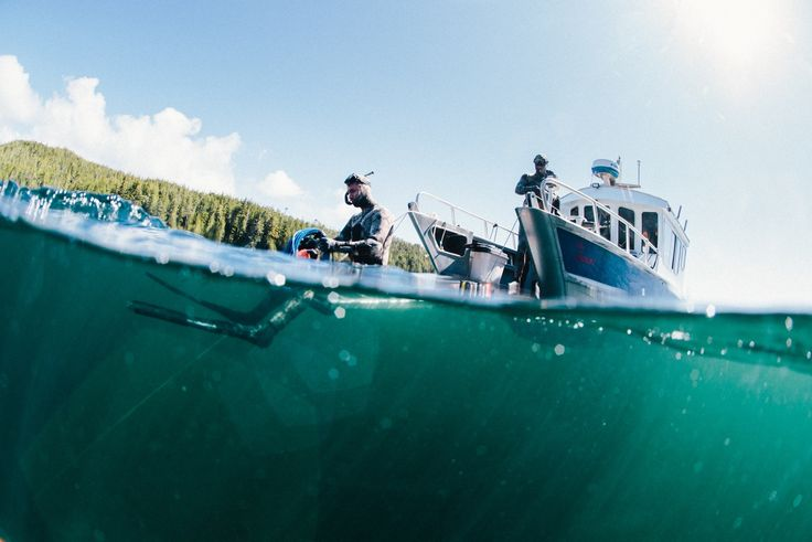 Tofino-based photographer Jeremy Koreski provides a glimpse into the world of free diving in BC, from Nimmo Bay Resort and the Queen Charlotte Strait.