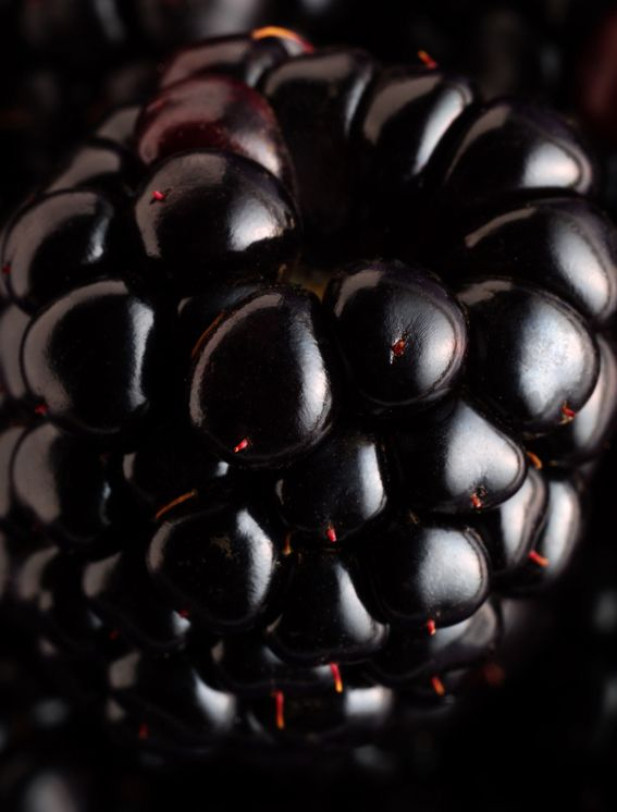 #Blackberry by Jess Koppel.     Could use close ups of fruit and veg for inspiration