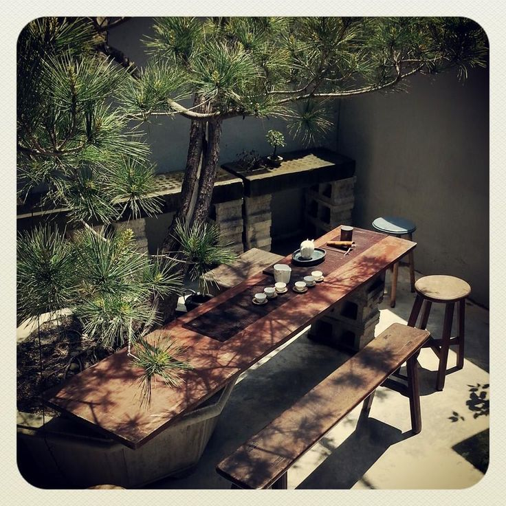 Taiwanese tea in the courtyard. I like how they made a table from the potted tree and a plank of wood.
