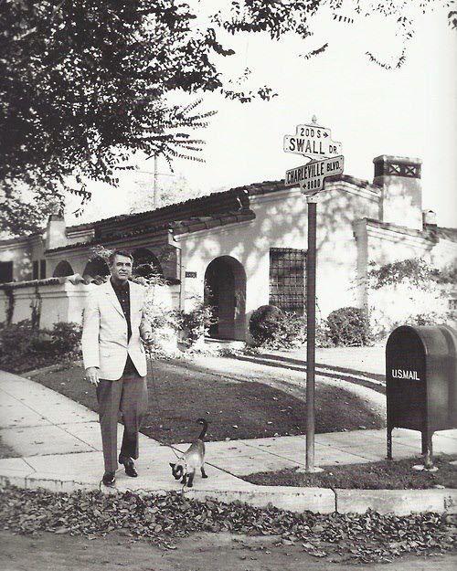 Cary Grant walking his cat. Circa 1940's                                                                                                                                                                                 More