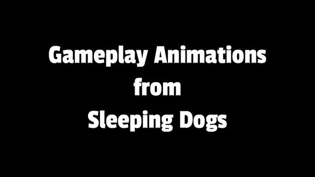 Sleeping Dogs Animations