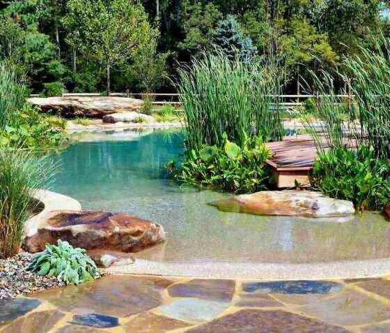 64 besten ideen f r swimming pools schwimmbecken bilder - Swimming pools made to look like ponds ...