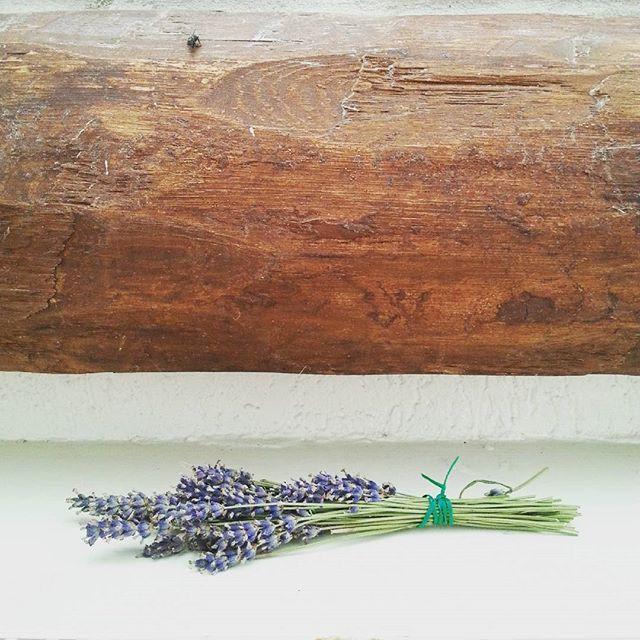 #lawenda #lavender #dom #home #decor #dekoracje #homesweethome #niemajakwdomu