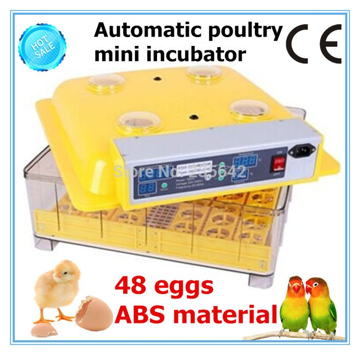 JN8-48 Cheap full automatic egg incubator for chicken quail egg hatching machine for sale