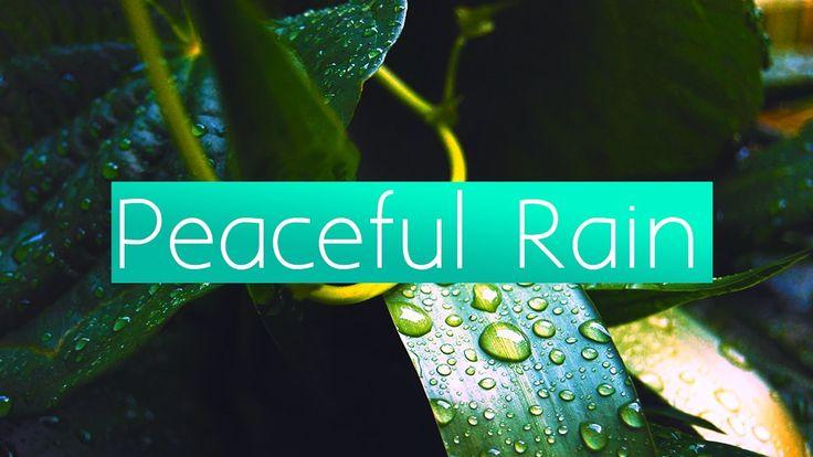 1 HOUR OF PEACEFUL RAIN MUSIC