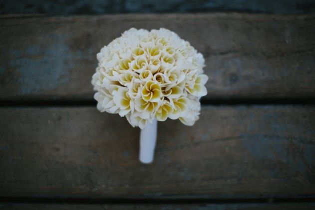 Fiji Wedding Packages with Chelsea Jayne Weddings - Bula Bride Fiji Destination Wedding Blog