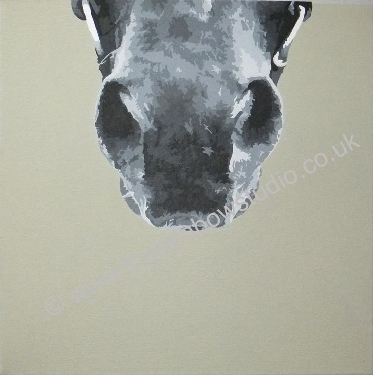 """Horses nose portrait painting acrylic on 16""""x16"""" canvas by Emma Giles www.therainbowstudio.co.uk commissions taken"""