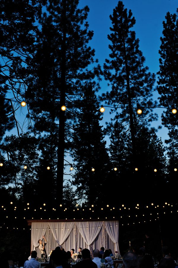 A remote fairy-lit forest wedding | Offbeat Bride I like the outdoor aspect, and I like the idea of using pine boughs for cheap and easy decor/accents